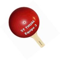 Raquette Equipe Saint Thual 3 CopyRights JME...