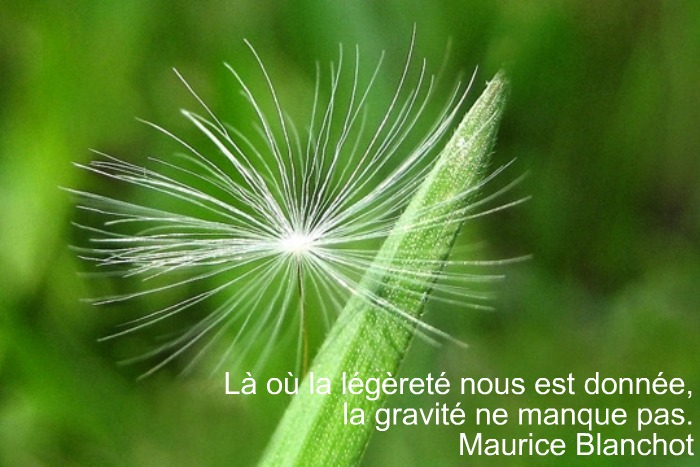 Citations Legerete Le Blog De Benissa