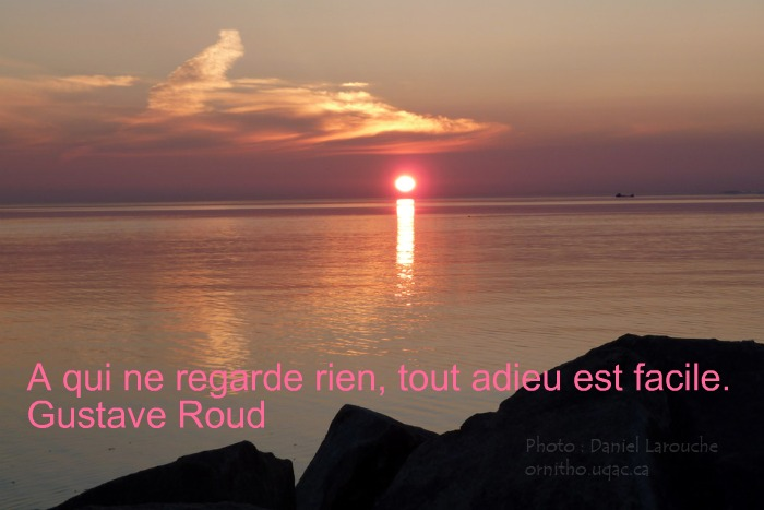 Citations adieu